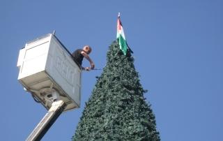 thumb-Bethlehem-tree.