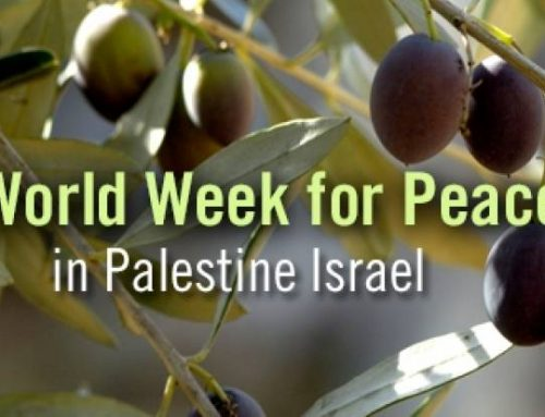 WCC invites participation in World Week of Peace in Palestine and Israel