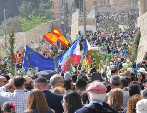 Thousands of local faithful and pilgrims celebrate Palm Sunday in Jerusalem.