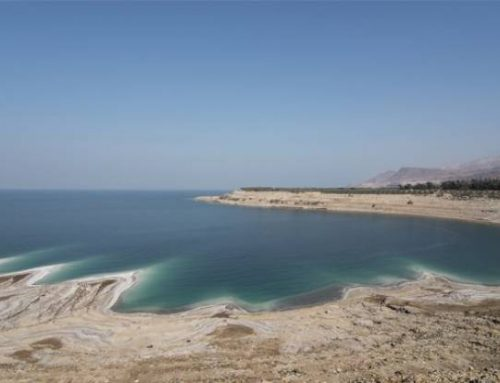 Saving Dead Sea a global responsibility.