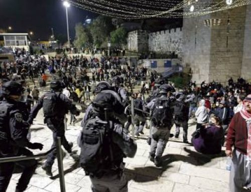 "Violence is rampant in the Holy Land. Father Ibrahim Faltas: ""the center of the conflict, as always, is Jerusalem""."